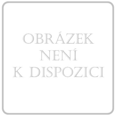 Theraflu forte 1000/200/12.2mg por.plv.s.10 CZ